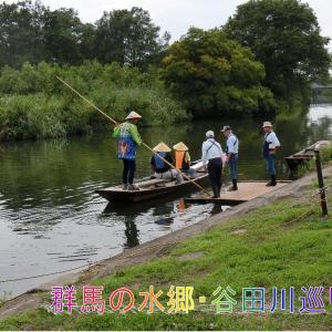 谷田川舟巡り、群馬県の水郷地帯