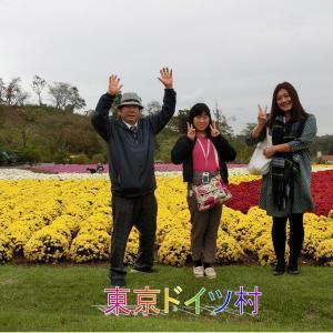 東京ドイツ村の洋菊満開・恐竜展・バーベキュー