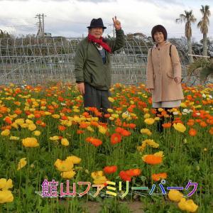 ポピーの里・館山ファミリーランド・久々の橙色子さん・桜も満開