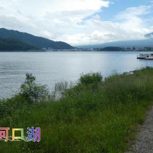 音楽と森の美術館・川口湖畔・霞む富士山を見ながら美しい庭園を散策しました。