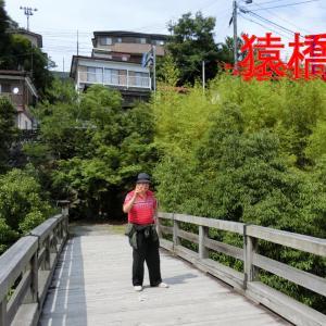 猿橋・猿の作った橋・日本三大奇橋・はねぎ作りです。