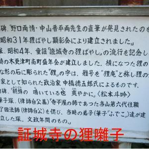 証城寺の狸囃子・銀子さんのぽんぽこぽんのすっぽんぽん・イオンモール木更津で買い物
