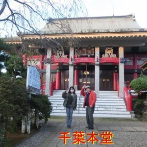 千葉市の千葉寺の大イチョウ・奈良時代から立っている・千葉寺は千葉氏の菩提寺・奈良時代に創建された