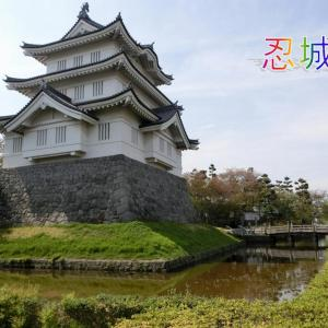 山田城は 森林公園の中にあります。忍城の子城です。城主は成田氏です。