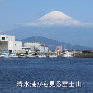 この日は、「日本平」に行きました。「日本平」は、風光明媚な清水港を見下ろす山であります。