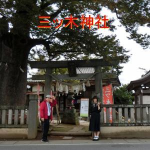 猿の性器を赤く塗って子宝祈願・橙色子さんの願い・埼玉県鴻巣市の三ッ木神社
