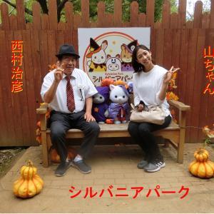 茨城県稲敷市のこもれび森のイバライド・シルバニアパークで遊びます