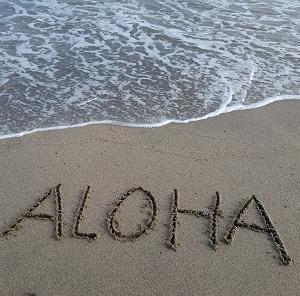 ハワイ行ってきました、、うそぴょん!