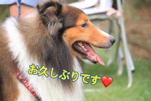 ミリアちゃん welcome ③