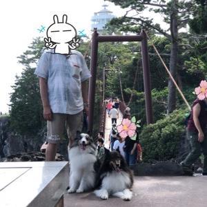 連休 家族旅行は伊豆高原旅行へ ② 城ヶ島吊橋編