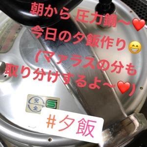 蒸気機関車?!シュッシュッ( ˊᵕˋ; )💦