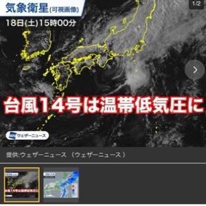お騒がせ『こうべがない台風14号』
