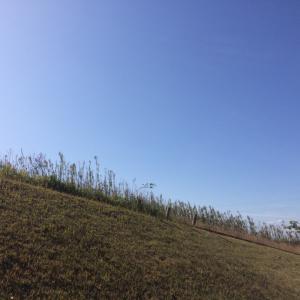 手取川沿いをポールウォーキング