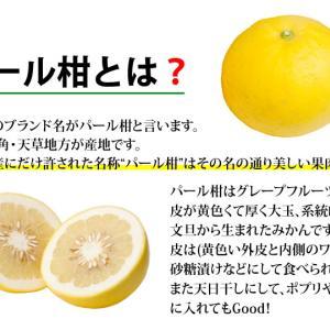 ◆楽天セールで熊本の訳ありパール柑を購入☆毎年購入している春の味覚☆