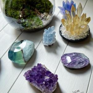 宝石石鹸と苔リウム