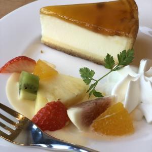 チーズケーキ☆デリチュース