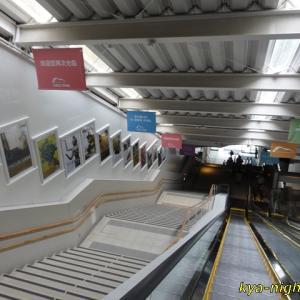 福岡市科学館2019「マンモス展」