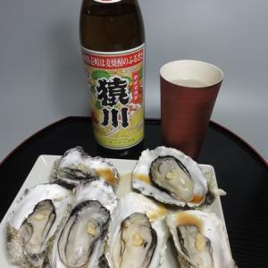 九十九島牡蠣と猿川伊豆酒造「猿川」