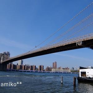 ニューヨークから帰ってきました!ジェイクに会えて舞い上がる。
