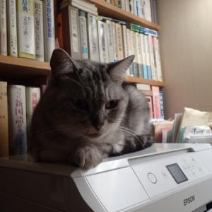 印刷もできる見張り台