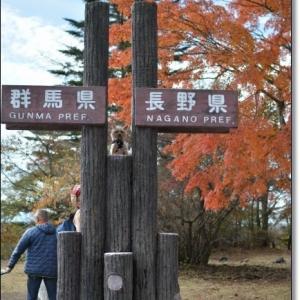 紅葉の軽井沢。