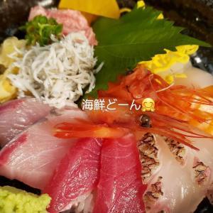 敦賀赤レンガで美味しい海鮮丼♪