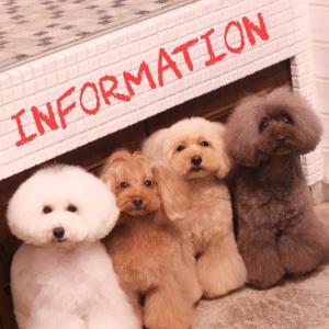 ☆ Informaition ☆