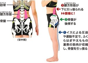 ふくらはぎへの刺激で、腰痛改善にらくらく挑戦しよう。