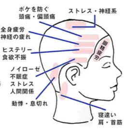健康を維持させるためにも、頭皮のお手入れが重要かなぁ・・・。