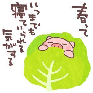 コンブ茶事件!!