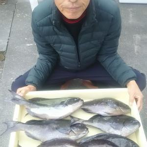 2019年3月9日式根島釣り情報