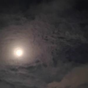 まんまる満月占いは当たるかな