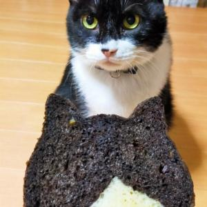 京都ねこねこ食パン