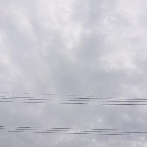 金曜日の朝、どんよりの空だけど、おはようございます。