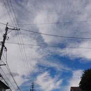 """""""12月は、楽をしよう♪1日1箇所、大掃除チャレンジ計画"""""""