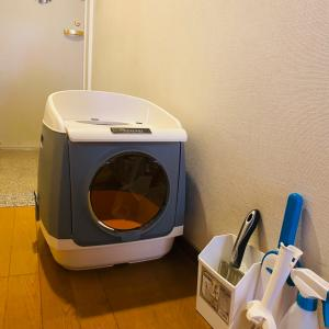ハウス型トイレ