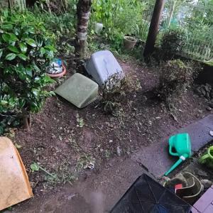 久しぶり我が家の庭と遊んだよ