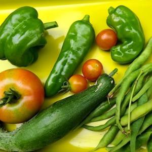 朝目覚め菜園収穫朝ごはん