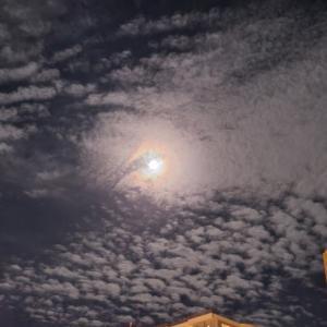 旭の月丸の輪郭地を照らす