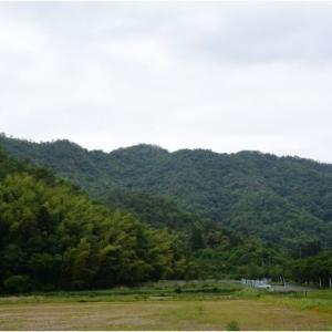 土岐頼芸と斉藤道三 二人の運命を分けた「大桑城」  令和2年5月