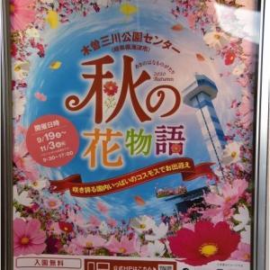 木曽三川公園センター 秋の花物語   令和2年10月