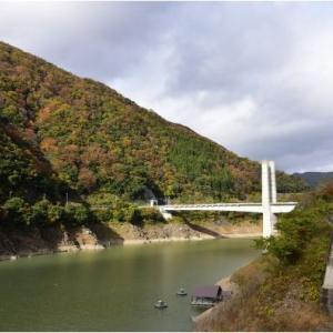 奥西美濃  徳山ダムと冠山林道の紅葉  令和2年11月