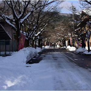 雪に包まれた谷汲山華厳寺   令和3年1月