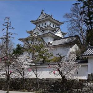 大垣の桜満開      令和3年4月