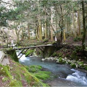 多賀町河内の伏流水湧出 天然記念物 河内の風穴   令和3年4月