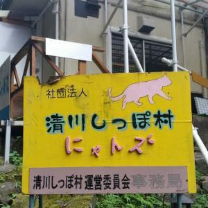 清川しっぽ村