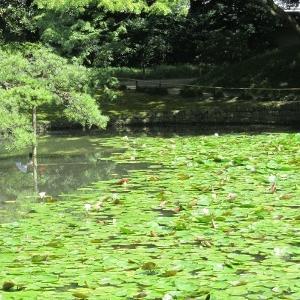 小石川後楽園の黄門様
