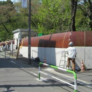 小石川植物園の塀、完成! へえ~!?