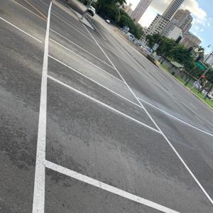 ハワイの横断歩道が!