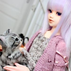 ユノア少女|サマーニットとリアルな猫ちゃん